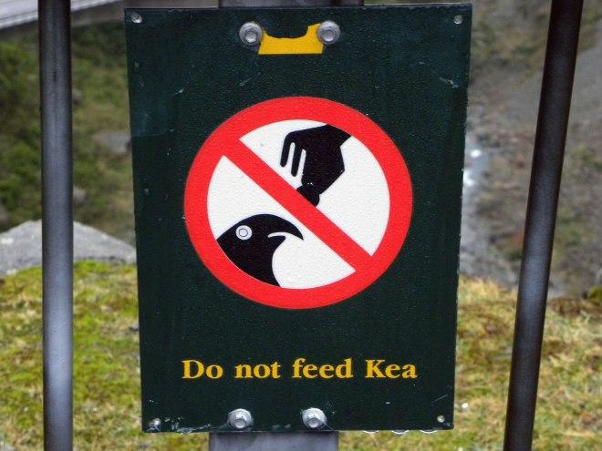 do-not-feed-the-kea-sign