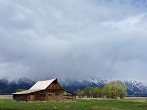 Mormon Row, Grand Teton