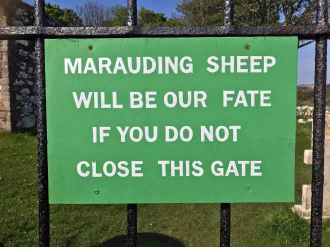 kildalton sheep sign